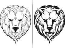 Sketch of Lion Head. A vector sketch of lion head on front view. This vector is very good for design that needs animal/lion element in strong and cool pose Royalty Free Stock Photography