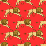 Sketch lion jumping through the fire hoop. In vintage style,  seamless pattern Royalty Free Stock Images