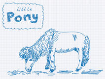 Sketch of little Pony Royalty Free Stock Image