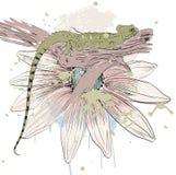Sketch of a lizard Stock Photos