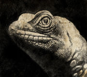 Sketch made with digital tablet of lizard head in sepia Royalty Free Stock Photos