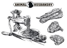 Sketch of meat grinder. Hand drawn sketch outdated grinder in the processing of meat Royalty Free Stock Photos