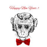 Sketch monkey face with red bow. Hand drawn doodle Stock Photography