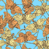 Sketch moth and bow in vintage style. Seamless pattern Stock Image