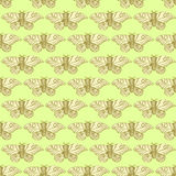 Sketch moth incect in vintage style. Vector seamless pattern Stock Image