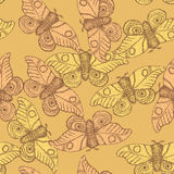 Sketch moth incect in vintage style. Vector seamless pattern Stock Photos