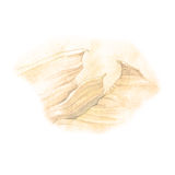 Sketch of mountain on old brown paper.  Royalty Free Stock Images