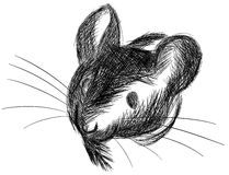 Sketch of a Mouse in black and white isolated Royalty Free Stock Photos