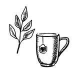 Sketch mug with tea leaves Royalty Free Stock Image