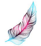 Sketch - neon gradient feather Royalty Free Stock Photography