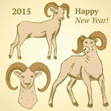 Sketch New Year ram in vintage style Stock Photo