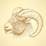 Sketch New Year ram in vintage style Royalty Free Stock Photo