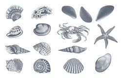 Sketch Ocean Nature Set Stock Photography