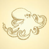 Sketch octopus, vector  background Stock Images