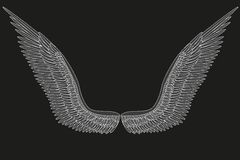Sketch open angel wings. Vector Stock Photography