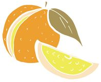 Sketch of an Orange fruit Royalty Free Stock Image