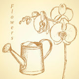 Sketch orchid and watering can,   background Stock Photos