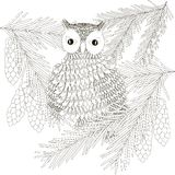 Sketch owl at spruce, thin black line on white, coloring page antistress Stock Image