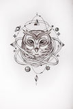 Sketch of owl surrounded by the universe on white background. Royalty Free Stock Image