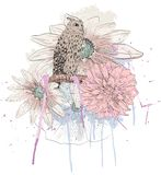Sketch of a owl Royalty Free Stock Images