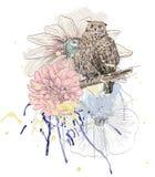 Sketch of a owl Royalty Free Stock Photos