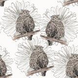 Sketch of a owl Stock Photos