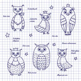 Sketch owls. Hand-draw. The set of owls drawn with pen on notebook sheet. Names of owls, written in Latin Royalty Free Stock Photography