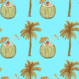 Sketch palm and coconut cocktail in vintage style Royalty Free Stock Images