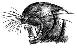 Sketch of a panther in black isolated Stock Photos