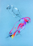 Sketch of a  parrot. Original pastel and  hand drawn painting or  working  sketch of parrot.Free composition Stock Image