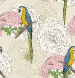 Sketch of a parrot. Vector sketch of a parrot with flowers. Hand drawn seamless pattern Stock Image