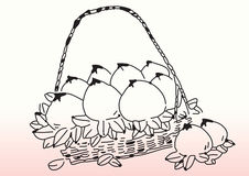 Sketch of peaches in basket Royalty Free Stock Photos