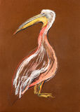 Sketch of a pelican Royalty Free Stock Photo