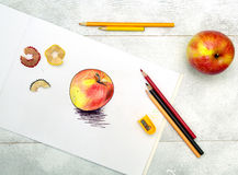 Sketch pencil drawing lesson. Sketch apple  pencil drawing art Royalty Free Stock Image
