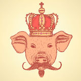 Sketch pig in crown with mustache, vector  background Stock Image