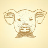 Sketch pig with mustache, vector background Stock Photo