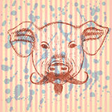 Sketch pig with mustache, vector background Royalty Free Stock Images