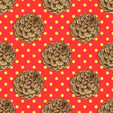 Sketch pine cone Royalty Free Stock Image