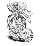 Sketch for pineaple Stock Photography