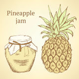 Sketch pineapple and jar in vintage style Royalty Free Stock Photography