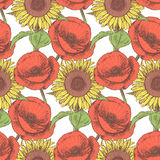 Sketch poppy and sunflower,  vintage seamless pattern Royalty Free Stock Photography