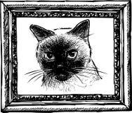 A sketch portrait of a thai cat vector illustration