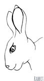 Sketch of a rabbit. Vector Royalty Free Stock Images