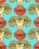 Sketch ram and poppy flower Stock Photography