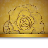 Sketch  rose background Stock Photography