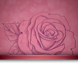 Sketch  rose background Royalty Free Stock Image