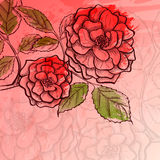 Sketch rose branch Stock Photo