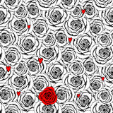 Sketch roses and heart Royalty Free Stock Photo