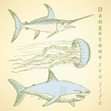 Sketch sea creatures in vintage style Stock Images