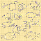 Sketch of sea Fish on a school notebook in a cage. Doodle vector royalty free illustration